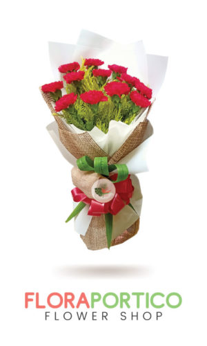 bouquet of carnations 2