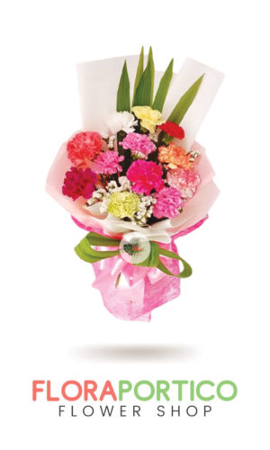 Bouquet of Carnations 3